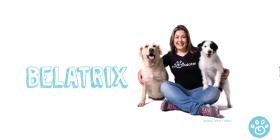 Cachorros de raça também são abandonados? Conheça a história de BELATRIX