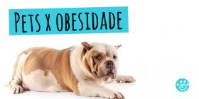 Pets x Obesidade