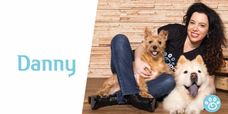 Danny: um cãozinho dado por Deus para a Cláudia