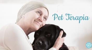 Conheça a Pet Terapia